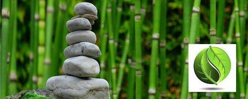 Acupuntura y Equilibrio